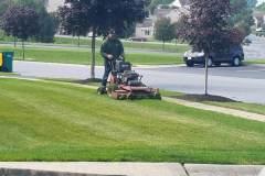 Lawn Mowing Walk Behing